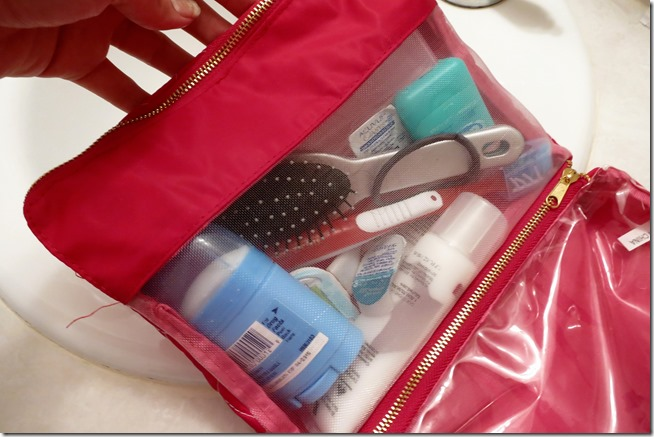 Holiday gift ideas for travelers cosmetics bag 2