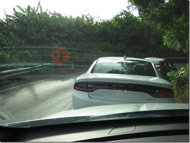 traffic stopped on the Road to Hana